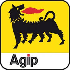 Nigerian Agip Oil Company Tertiary Scholarship Scheme for Undergraduate Nigerian Students 2017