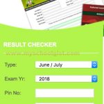 NECO Result for 2019 June/July SSCE is Out : mynecoexams.com