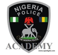 How to Print Nigeria Police Academy Exam Card