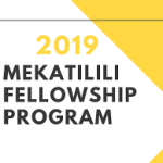 Mekatilili Fellowship Program 2019 for Innovative Kenyans (Fully-funded)-How To Apply For The Scholarship.