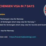 How To Get Visa to Norway From Nigeria
