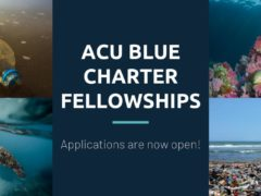 Association of Commonwealth Universities (ACU) Blue Charter Fellowships 2019- How To Apply