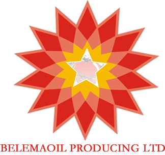 Belemaoil Post-Primary Scholarship