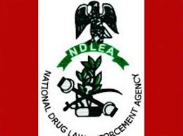NDLEA Recruitment Past Questions and Answers Free